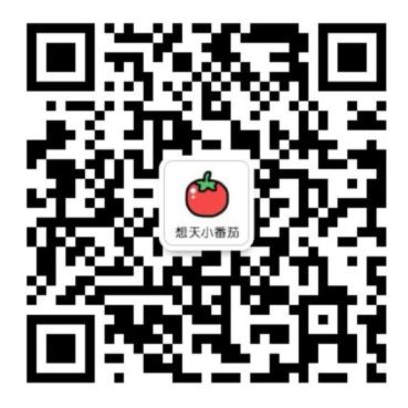小番茄1.png
